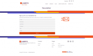 Labrys Consulting Newsletter Page Screenshot