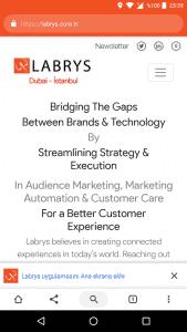 Labrys Consulting Progressive Web App (PWA) Page Screenshot
