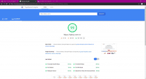 Labrys Consulting Google Pagespeed Desktop Scores Page Screenshot